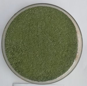 Curry Leaf powder